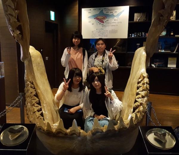 aquarium2